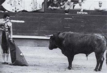 Belador, o (e não um) Toiro Indultado em Madrid