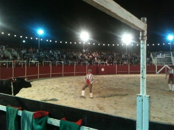 Ânimos agitados em Santiago da Guarda