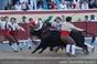 Imagens do Concurso de Ganadarias em Vila Franca de Xira