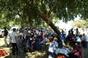 Imagens da Festa Campera da Associação de Festas Populares do Samouco