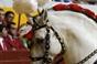 Algumas imagens da corrida do Redondo