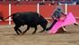 As imagens do Festival taurino de Vila Boim