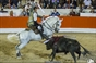 As imagens de Alcochete - Despedida de Vasco Pinto