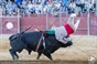 As imagens da corrida de toiros em Grândola