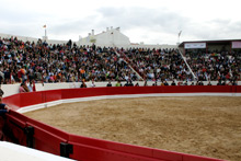 Festival de Alcochete foi casa cheia