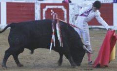 Jairo Miguel, encerra-se com Seis Toiros em Cáceres