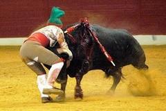 Amadores de Arronches tornam a pegar em Espanha