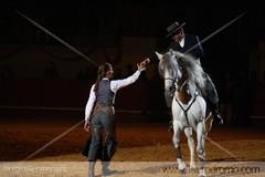 Fotos da Gala Equestre em Évora