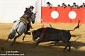 Imagens do Festival de Variedades Taurinas em Mourão