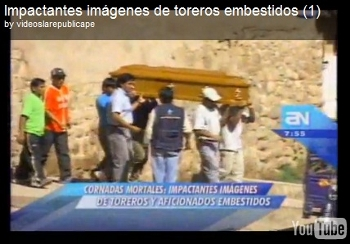 Vídeo impressionante - Cornadas mortais no Peru