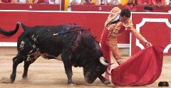 Matador de Toiros Joselillo triunfa na quarta Corrida