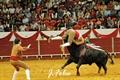 Imagens da primeira corrida de toiros da feira de S. Mateus em Elvas