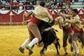 Imagens da segunda corrida de toiros da Feira de S. Mateus