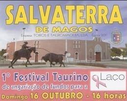 Primeiro Festival Taurino da Laço em Salvaterra de Magos