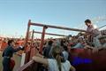 Imagens do Festival em Vila Boim.