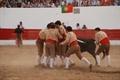 Imagens do Festival de Póvoa de São Miguel