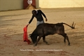 Imagens da tenta no Tentadero do Cabo e da Gala do Clube Tauromáquico Vilafranquense