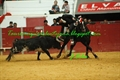 Imagens do Festival a Favor dos B. V. de Elvas