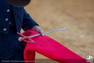 Festivais de Arronches e Alcochete são o destaque no Fim de Semana