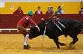 Imagens do Festival Taurino no Coliseu de Redondo