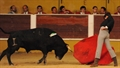 1º Ciclo Nacional de Novilhadas das Escolas de Toureio