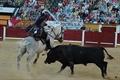 Imagens da Corrida de Rejoneio em Badajoz
