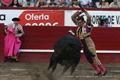 Imagens Taurodromo.com da Corrida a Pé das Sanjoaninas