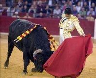 Javier Castaño corta uma orelha em Pamplona