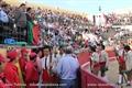 Imagens da 130ª Tradicional Corrida de Toiros do 15 de agosto nas Caldas da Rainha