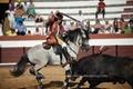 Reportagem da 2ª corrida de toiros de Coruche