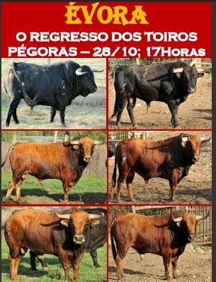 Os Pégoras regressam dia 28 a Évora