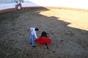 Garraiada de Carnaval da Tertúlia Tauromáquica Nossa Senhora do Carmo