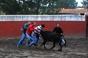 Forcados de Coruche Iniciaram Temporada 2013 na Quinta da Silveira
