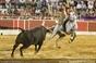 Imagens da corrida do Montijo