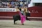 Imagens da Ultima Corrida das Sanjoaninas 2013