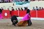 Imagens do Festival da Azambuja