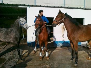 Paulo Jorge Santos; a rotina de inverno de um cavaleiro