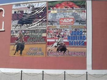 Amanhã em Salvaterra Estreia da Ganadaria de Alves Inácio