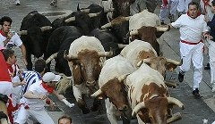 Carteis da Feira de Pamplona de 2014