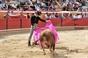 Imagens do Festival Taurino do Cartaxo