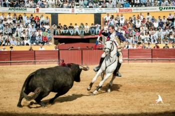 Vídeo-resumo da actuação do cavaleiro João Ribeiro Telles em Montemor