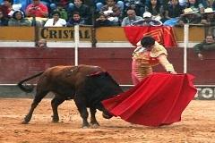 Triunfo de Silveti e Roca Rey em León