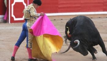Corridas de Toiros são declaradas Património Cultural em Espanha