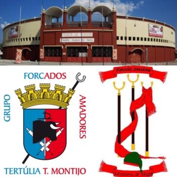 Treino de forcados no Montijo este domingo