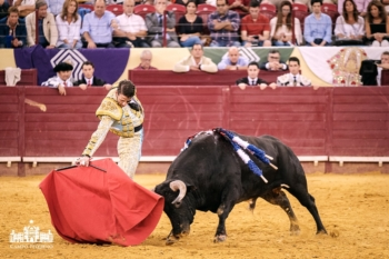 Padilla, um toureiro grato